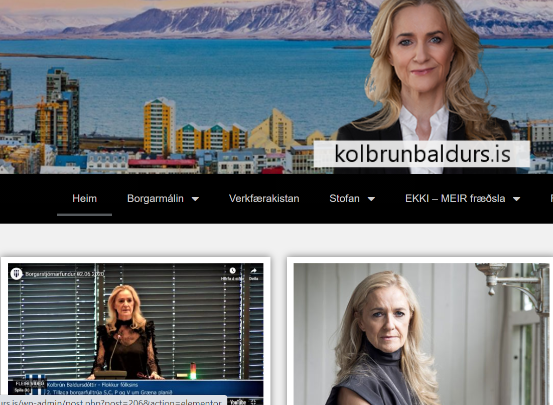 Read more about the article Um vefinn